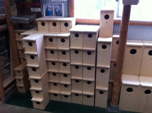 breeding_boxes